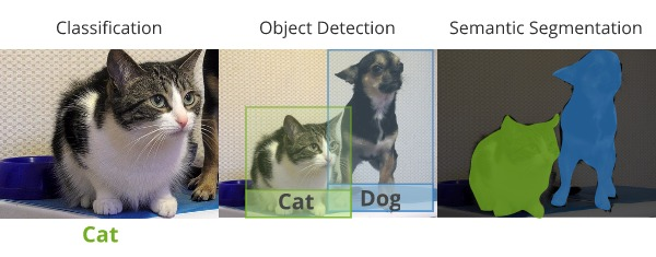 Image comparing classification segmentation and object detection